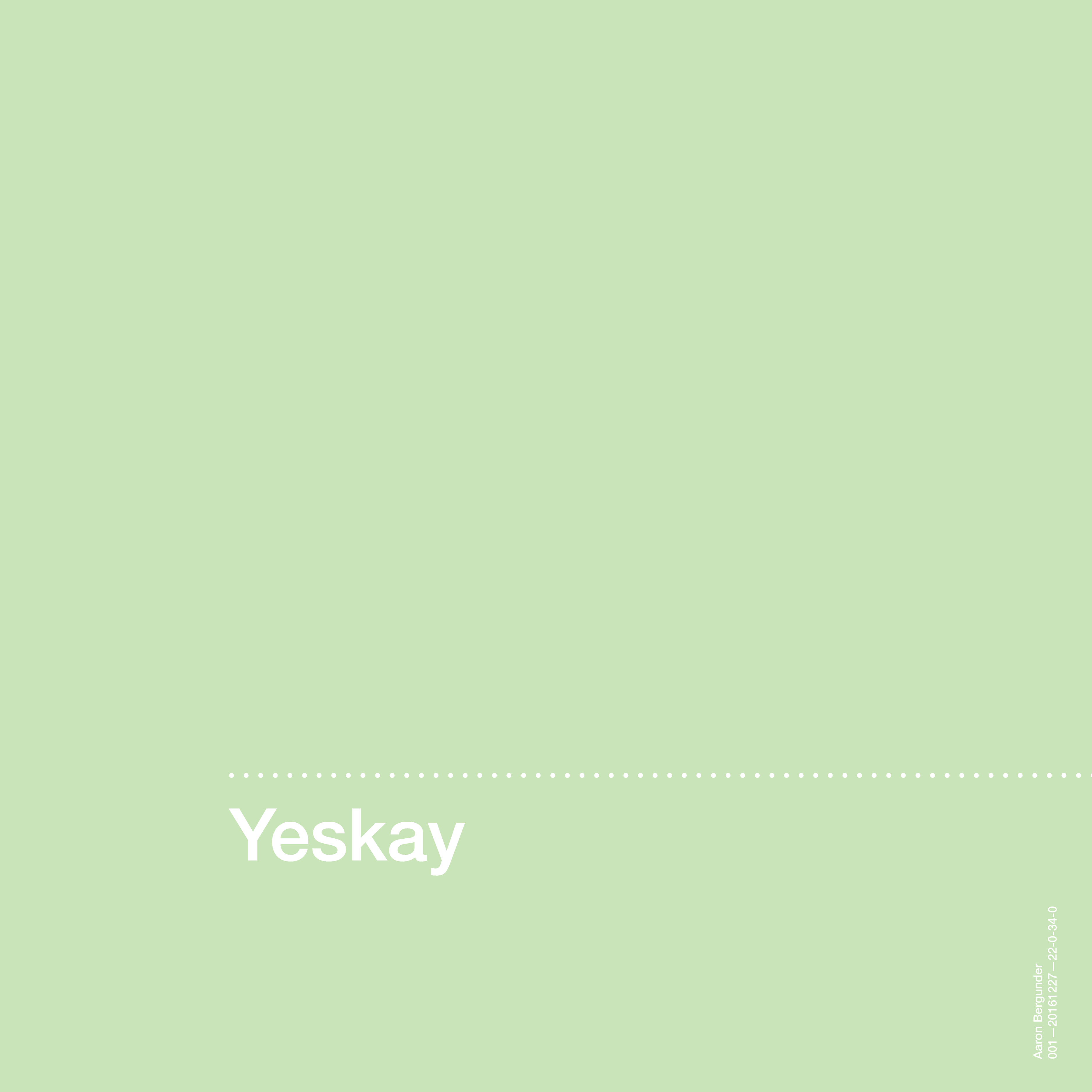 Yeskay Album Artwork