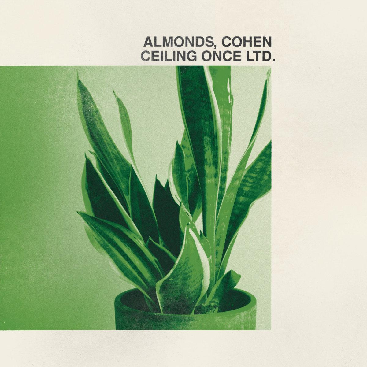 Albums - Aaron Bergunder